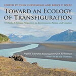 Toward an Ecology of Transfiguration: Orthodox Christian Perspectives on Environment, Nature, and Creation (Orthodox Christianity and Contemporary Thought)